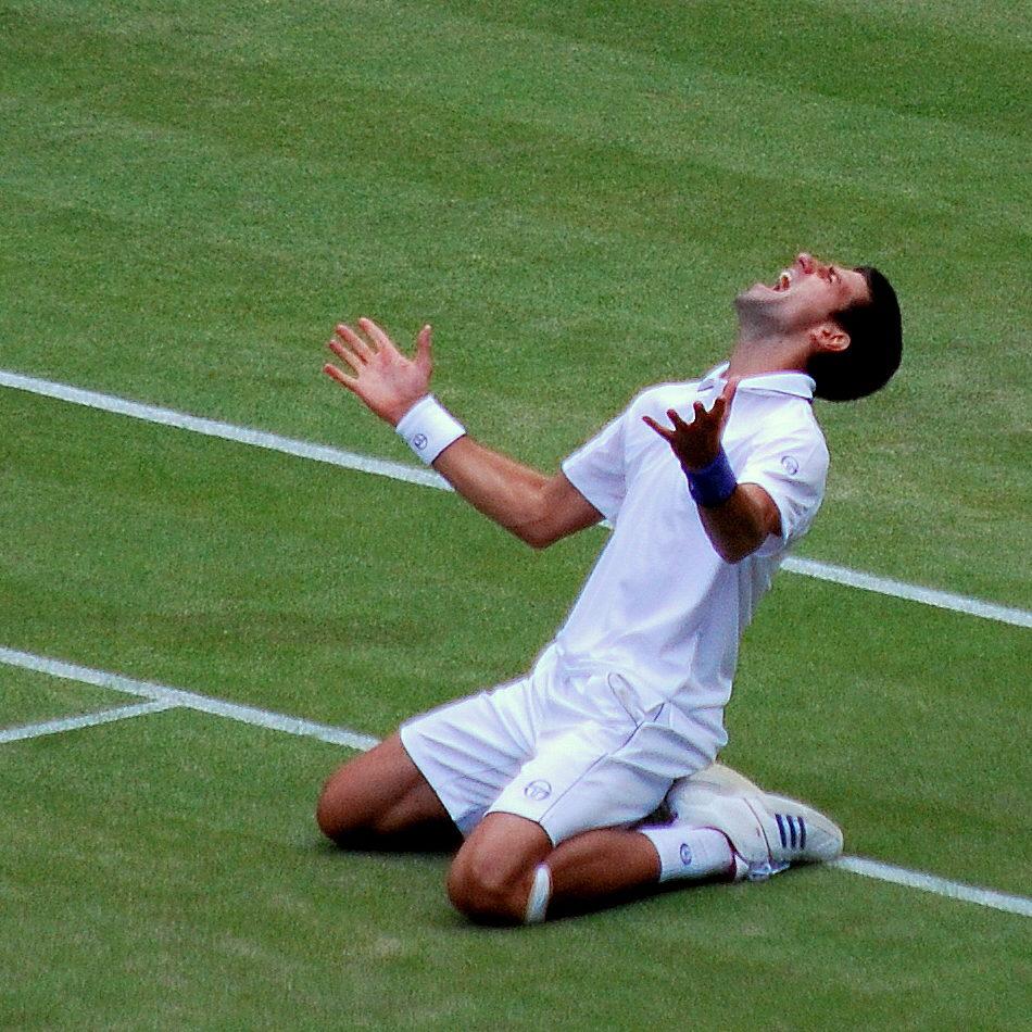 Djokovic - a good tennis player, last year
